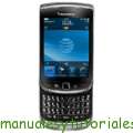 BlackBerry Torch 9800 curso desarrollo aplicaciones blackberry master online
