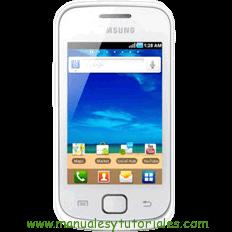 Samsung Galaxy Gio manual usuario pdf