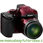 manual-pdf-español-Nikon-Coolpix-P520