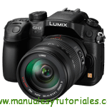 Panasonic LumixG GH3H Manual de usuario PDF español