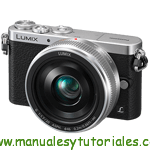Panasonic Lumix GM1 Manual de usuario PDF español