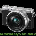 Panasonic Lumix GM1 Manual de usuario PDF español